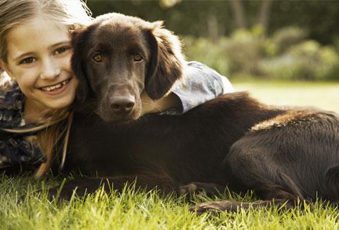 Best Breed Of Dog For Seizure Alert